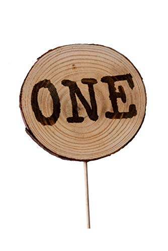 CMS Design Studio Handmade Wooden Wood Disc 1st First Birthday Cake Topper Decoration - One - Made in USA