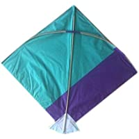 shopping hub Paper Kite Medium Size 25*27 inch ,Multi Colour, Pack of 20, Colour Indian Fighter Cheel Kite