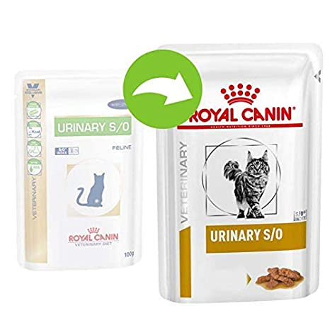 ROYAL CANIN Urinary S/O Chick Comida para Gatos - 4800 gr: Amazon ...
