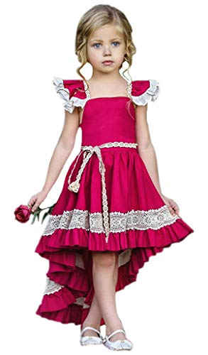 - Toddler Kids Little Girls Sleeveless Lace Wedding Birthday Party Princess Ruffle Dress Outfits (4-5T, Red)