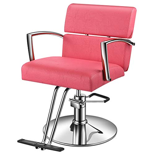 Baasha Beauty Pink Salon Hydraulic Styling Chair, Beauty Equipment Salon Chairs for Hair Stylist, Styling Chair for Salon Pink, Hair Stylist Chair, Hydraulic Chair