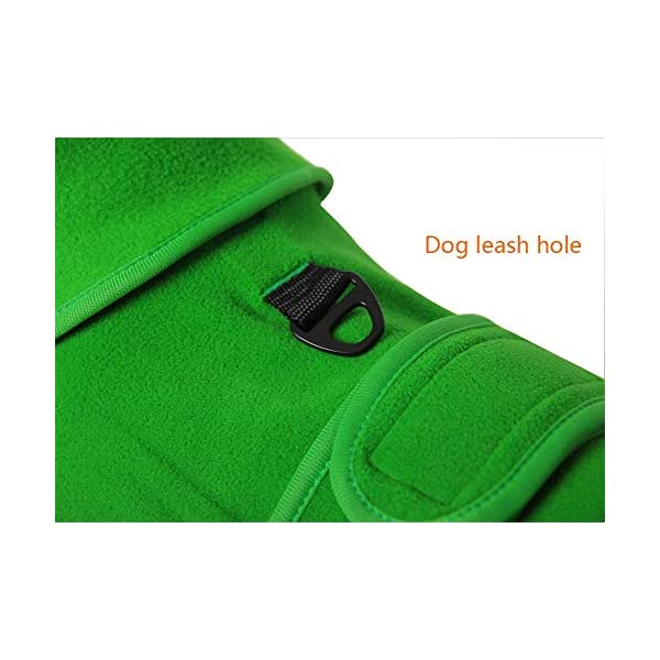 QBLEEV Small Dog Fleece Jackets Cold Weather Coats Warm Turtleneck Doggie Sweaters Vest Harness Clothes Puppy Clothes… Click on image for further info. 3