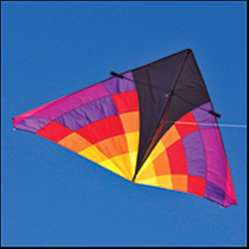 (Into The Wind 9-ft. Levitation Ember Single Line Delta Kite)