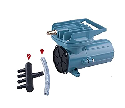 Best Cheap Deal for HSH-Flo DC 12V Elemental O2 Air Pump Aquarium Pond Aquaponics Hydroponics from HSH-Flo - Free 2 Day Shipping Available