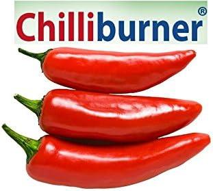 chilliburner vélemények reg enor diéta mit lehet enni