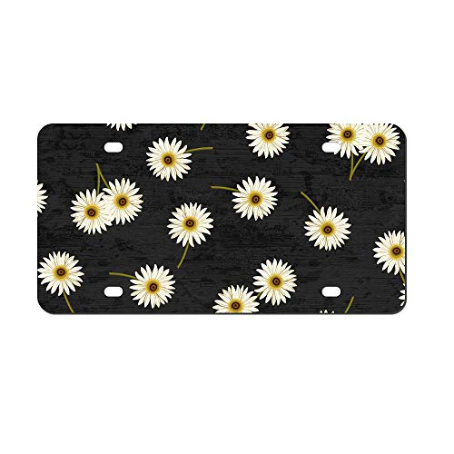(DKISEE Abstract Daisies Black License Plate Cover Aluminum Car Front License Plate)