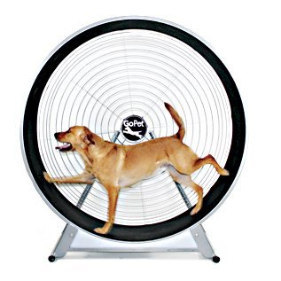 GoPet TreadWheel for Large Dogs up to 150 Pounds by GoPet