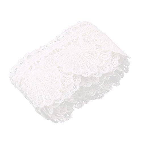 Amazon.com: eDealMax poliéster DIY de manualidades de la Falda de la ropa de la decoración del cordón del Bordado recorte Blanco
