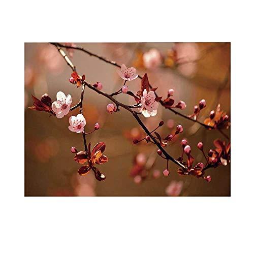 (Nature Photography Background,Cherry Blossom Sakura Tree Branches Flowering Japanese Flourishing Print Decorative Backdrop for Studio,5x3ft)