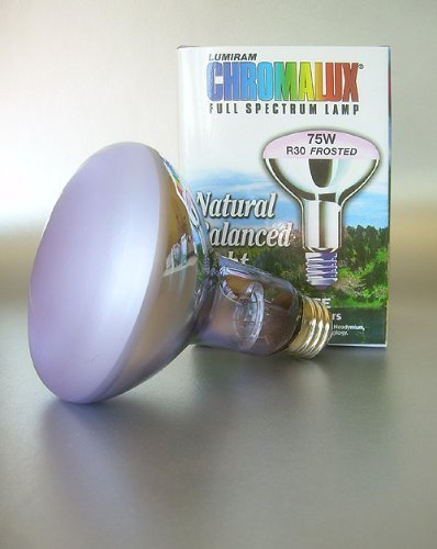 Full Spectrum Lamps Chromalux - Chromalux Light Bulb Frosted Flood Full Spectrum 75w by Chromalux
