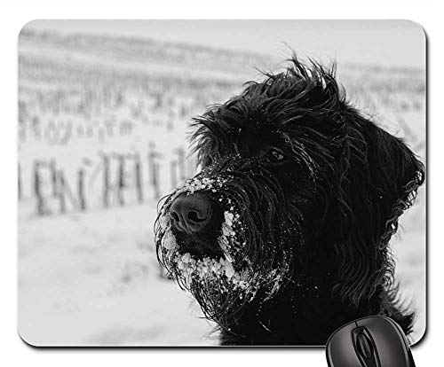 (Mouse Pads - Dog Pet Snow Winter Labradoodle Schnauzer)