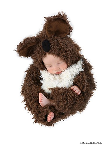 Princess Paradise Baby Anne Geddes Koala, Brown/White, 3-6 Months
