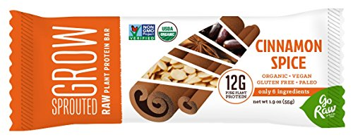 Go Raw Organic Superfood Protein Bar, Cinnamon Spice (case of 12 bars)