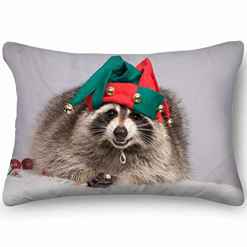 Raccoon Christmas Jester Hat Animals Wildlife Holidays Cotton Linen Blend Decorative Throw Pillow Cover Cushion Covers Pillowcase Pillow Shams, Home Decor Decorations For Sofa Couch Bed Chair 20X36 In ()