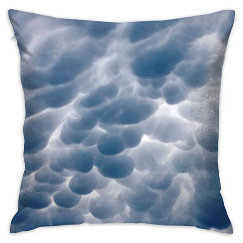 """Oh-HiH 18"""" X 18"""" Throw Pillow Cover Sofa Cushions Pillowslip Weather Samantha Murphy Pillowcase for Household Bed Sleeping"""