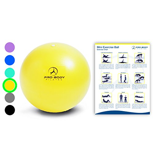 Mini Exercise Ball - 9 Inch Small Bender Ball for Stability, Barre, Pilates, Yoga, Core Training and Physical Therapy (Yellow)