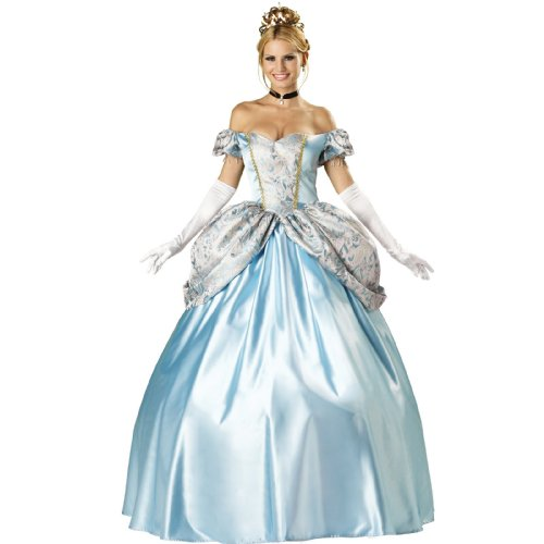 Princess Cinderella Costume