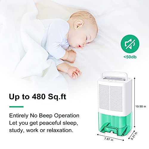 MADETEC Upgraded Dehumidifiers for Home (480 Sq.ft), Small Portable Dehumidifier with Drain Hose and 64oz Water Tank , Ideal for Basements Bedroom Bathroom Closet Kitchen RV