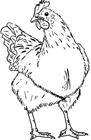 RS00032454 Azeeda A7 Chicken Unmounted Rubber Stamp