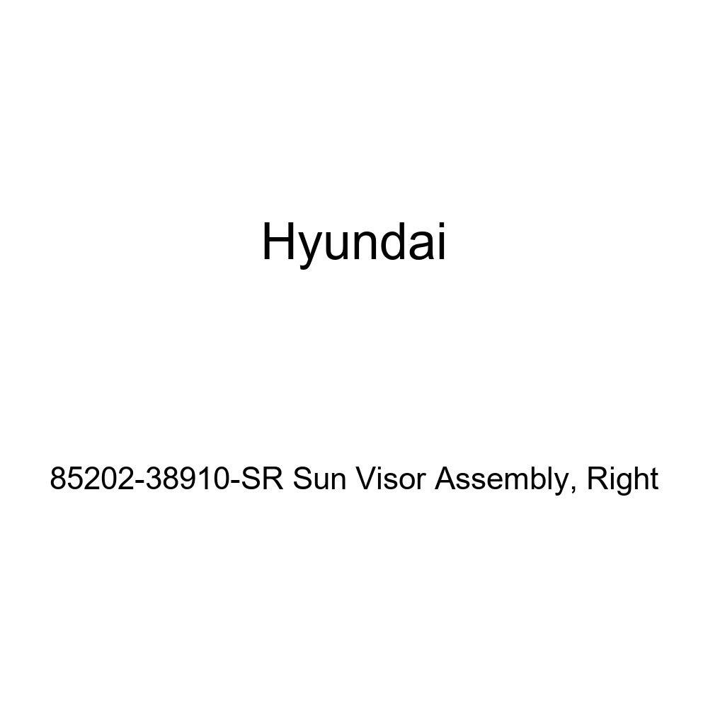 Genuine Hyundai 85202-38910-SR Sun Visor Assembly Right