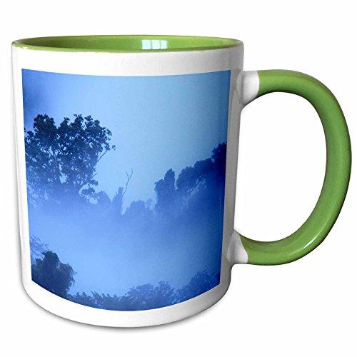 Queensland Boulder (3dRose Danita Delimont - Queensland - Tropical rainforest at Babinda Boulders, near Cairns, Australia. - 11oz Two-Tone Green Mug (mug_248164_7))