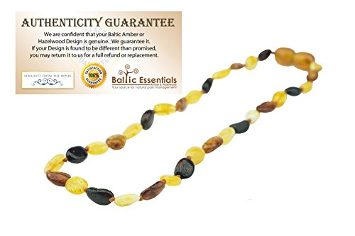 11 Inch Baltic Amber Teething Necklace Polished Rainbow Multi Cherry, Cognac, Lemon Carmel Bean Olive for Infant, Baby Drooling & Teething Pain, Growing pains, Certified Twist-in Screw Clasp by Baltic Essentials