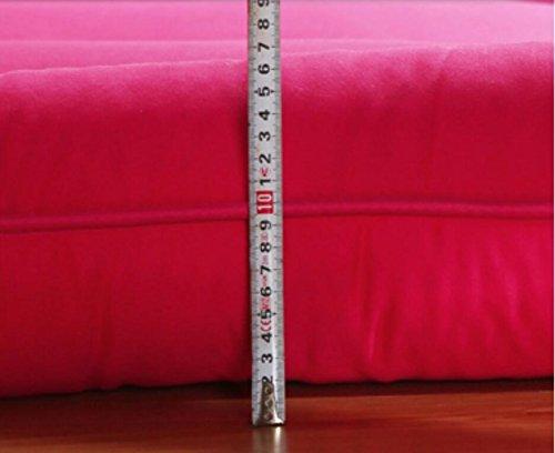 DHWJ Thickened,Tatami,Mattress Single,Double,Student dormitory,10cm bed cushion-B 120x200cm(47x79inch) by DHWJ (Image #3)