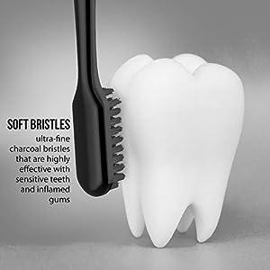 5 Pack Charcoal Toothbrush [GENTLE SOFT] Slim Teeth Head Whitening Brush for Adults & Children - Ultra Soft Medium Tip Bristles (Black)