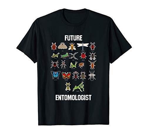 Future Entomologist Insect Chart T Shirt Bug Types Tee (Bug Kids T-shirt)