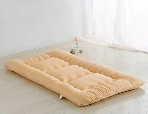 Colorful Mart Light Tan Futon Tatami Mat Japanese Futon Mattress Futons for Sale Luxury Bedding Idea, Twin Size