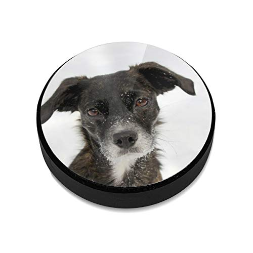 Car Mount Holder for Cell Phones - Extra Slim - Dog Snow Face ()