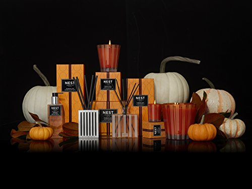 NEST Fragrances 3-Wick Candle- Pumpkin Chai, 21.2 oz by NEST Fragrances (Image #1)