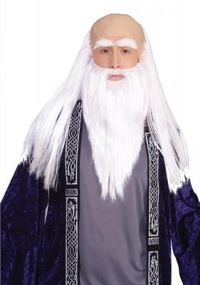 Wizard Adult Disguise Set (As Shown;One (Wizard Wig With Beard)