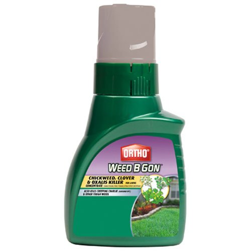 Ortho Weed B Gon Chickweed, Clover and Oxalis Killer for Lawn Concentrate, 16-Ounce