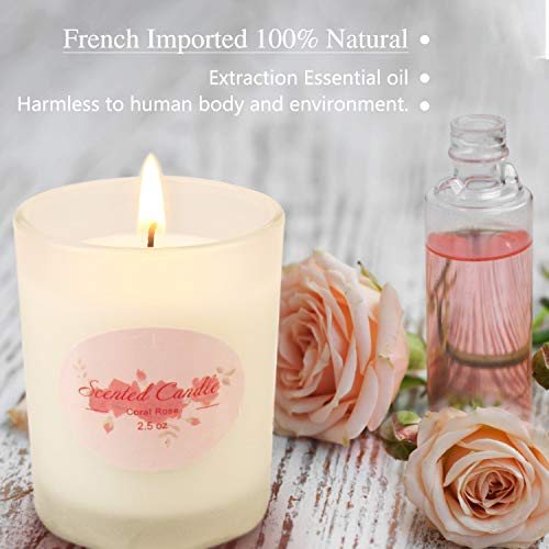Frosted Jar Scented Candle Sets Gifts for Women Natural Soy Wax Aromatherapy Candles Long Lasting Stress Relief for Bath…