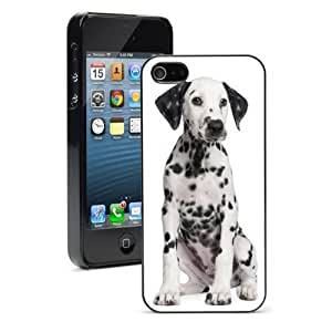 For Apple iPhone 4 4S Hard Case Cover Dalmation Dog