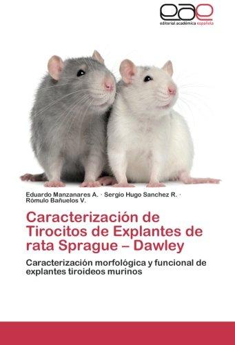 Descargar Libro Caracterizacion De Tirocitos De Explantes De Rata Sprague - Dawley Manzanares A. Eduardo