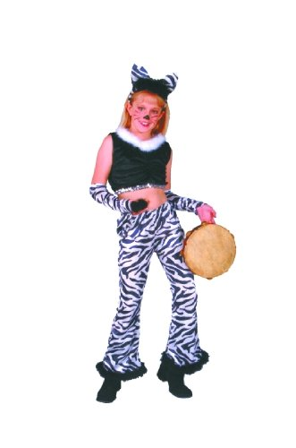 Rock Star - Zebra, Child Small (Party Rock Zebra Costume)