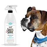 SKOUT'S HONOR Professional Strength, All-Natural Dog Odor Eliminator - Non-Toxic, Biodegradable Eco-Friendly - Odor Eliminating Technology Destroys Odor Molecules On Contact - 32-oz Spray Bottle