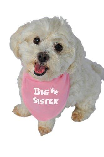 Ruff Ruff and Meow Doggie Bandana, Big Sister, Pink, Small, My Pet Supplies