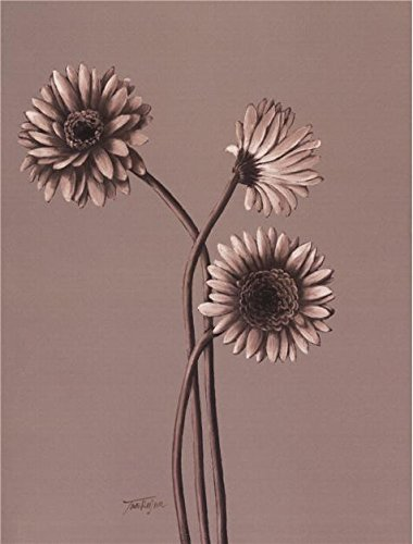 High Quality Polyster Canvas  The Best Price Art Decorative Prints On Canvas Of Oil Painting Gerbera Daisy  24X32 Inch   61X80 Cm Is Best For Laundry Room Artwork And Home Artwork And Gifts
