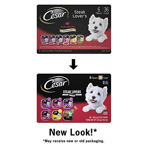 CESAR Soft Wet Dog Food Classic Loaf in Sauce Steak Variety Pack