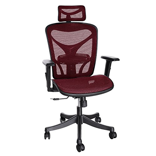 ancheer-ergonomic-office-chair-high-back-mesh-office-chair-with-adjustable-lumbar-supportarmrest-and