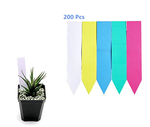 BaiJia Color Plant Labels - 6 Inches Multi-colored Plant Markers, Plant Stakes, Plant Labels-200 Pieces by BaiJia