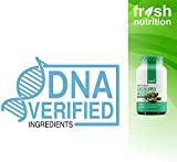 Green Lipped Mussel Capsules - Strongest DNA