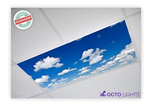 Cloud 012 2x4 Flexible Fluorescent Light Cover