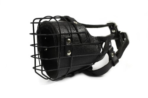 Dean and Tyler DT Freedom Winter Black Padded Muzzle, Size No. 18 - Newfoundland Female by Dean & Tyler