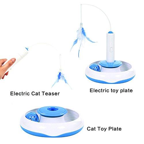 Buy motorized cat toys