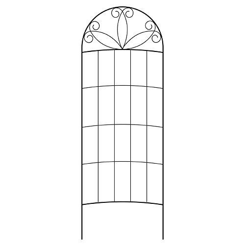 80 in. Black Steel Scroll Curved Trellis by Vigoro