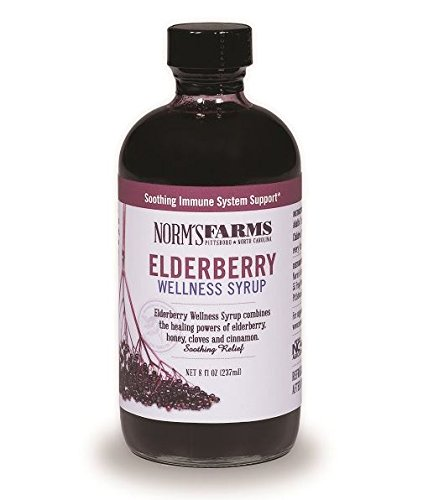 Norm's Farms Elderberry Wellness Syrup 8 Ounce